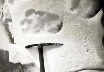 Следы снежного человека проданы за 7 тыс. долларов