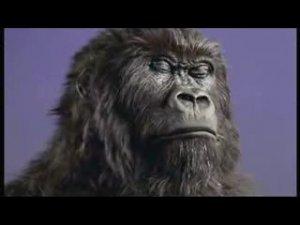 Gorilla Drummer