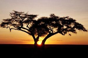 Восходы солнца