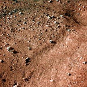 """""""Феникс"""" послал на Землю первые снимки с Марса"""