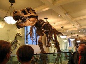 В Канаде найдены останки динозавров, погибших в борьбе