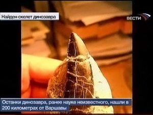 """""""Польский"""" динозавр"""