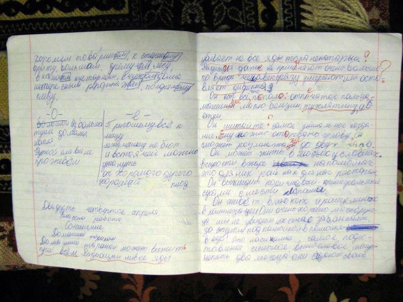 Юмор. yegorka пишет Любимая жена сидит, проверяет домашние задания