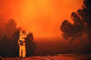 Лесные пожары в окрестностях Лос-Анджелеса (9 фото)