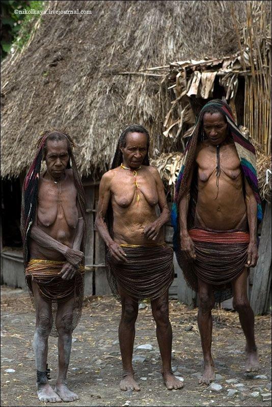 племя дани из папуа их обычаи порно