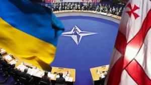 НАТО подтверждает стремление принять в свои ряды Украину и Грузию