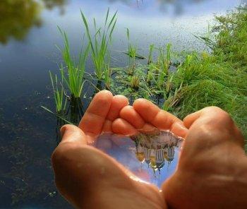 Отражения в воде