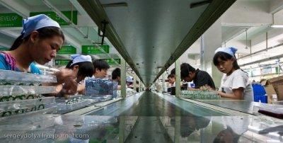 Китайские заводы (41 фото+текст)