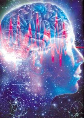 """Ученые из США узнали, что после еды клетки мозга """"отключаются"""""""