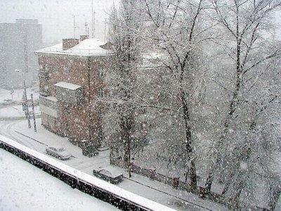 Первый снег оставил без света Новгородскую область
