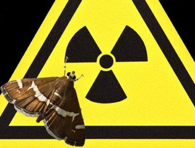 Атомная энергия для электроники кибержуков