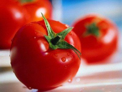 Из истории томатов