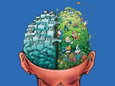 Мозгофакты