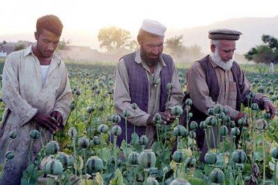 Россия списала долг Афганистана на общую сумму в 12 млрд долларов