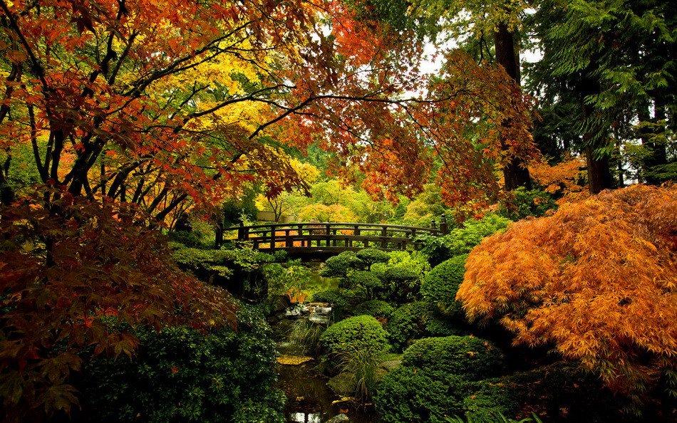 Осенний японский сад в портленде
