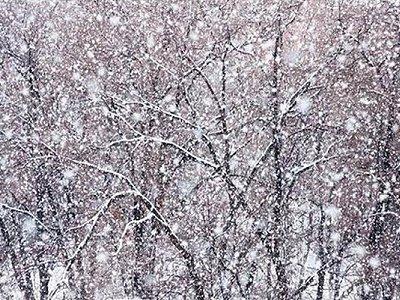 В Чувашии ожидаются сильные снегопады