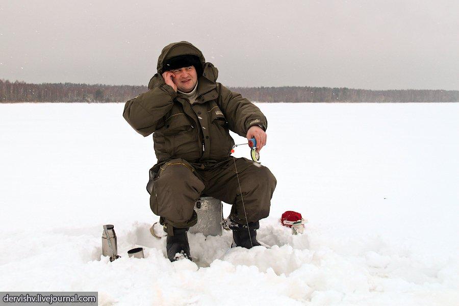 Солёные кабачки на зиму в банках рецепты