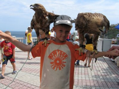 Поддержим акцию: лето без фото с животными