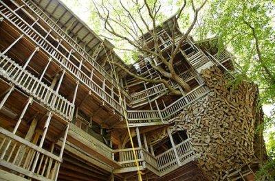 Самый большой в мире дом на дереве (9 фото)