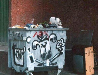 Деликатес из мусорки