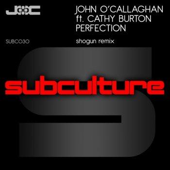 John O'Callaghan Feat Cathy Burton - Perfection (Shogun Remix)