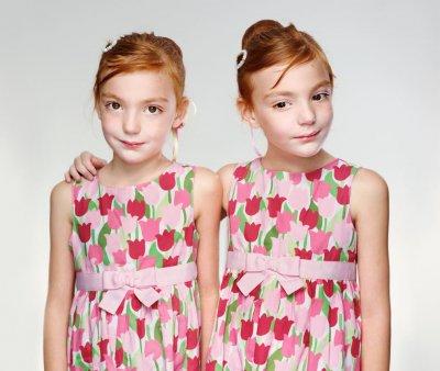 Пара слов о близнецах