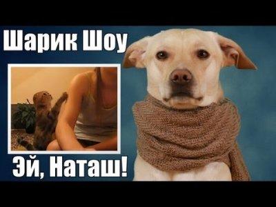 Шарик Шоу - Эй, Наташ