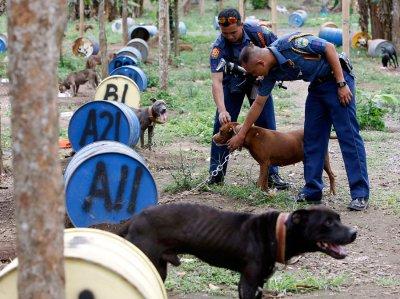 """На Филиппинах защитники животных обнаружили собачий """"концлагерь"""""""
