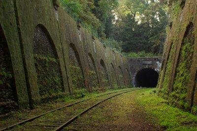 Заброшенные железные дороги (16) фото
