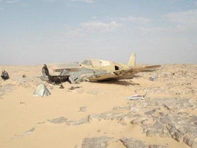 Самолет Кёртисс P-40 спустя 70 лет (25 фото+видео)