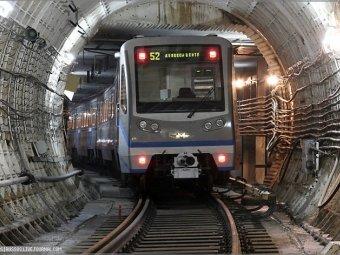 Новые желания чебоксарцев: автозавод, метро и приют для животных