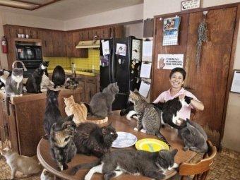 Госдума привяжет домашних животных к квадратным метрам