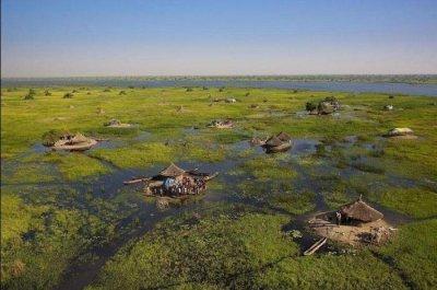 Жизнь на болоте в Южном Судане (9 фото)