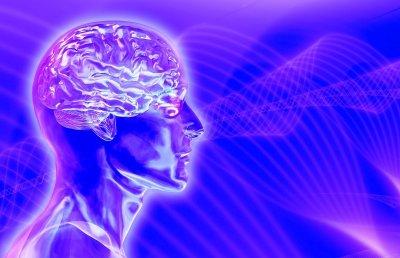 Видеоигры полезны для мозга
