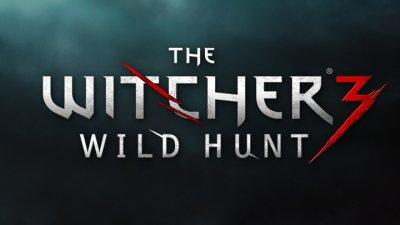 Полное прохождение The Witcher 3: Wild Hunt может занять более 200 часов