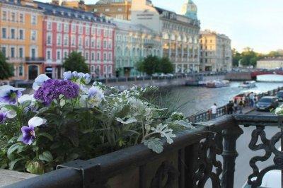 Петербургский хостел снова признан лучшим в мире