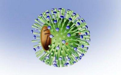 Камфецин - новое противовирусное средство широкого спектра из России