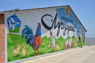 На базе племптицезавода «Хабаровский» заработал новый инкубаторий на 320 тыс штук яиц